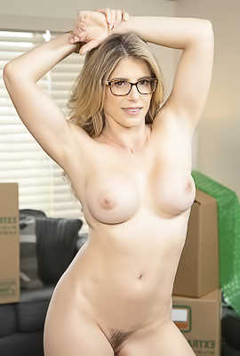 Cory Chase Gets Her Nice MILF Pussy Fucked